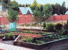 Зимние идеи летнего огорода